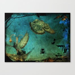 Vintage Pigeons Canvas Print