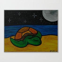 Sleeping Honu Canvas Print