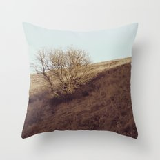 The Back of Beyond Throw Pillow