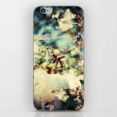flowers & Ice. iPhone & iPod Skin