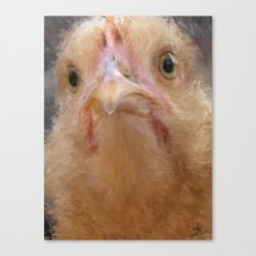 Chicken Face Canvas Print