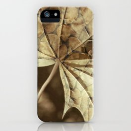being and time iPhone Case