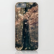 Tales from the trees 1 Slim Case iPhone 6s