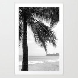 Palm Tree Noir #15 Art Print