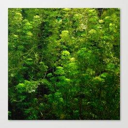 Underwater green Canvas Print
