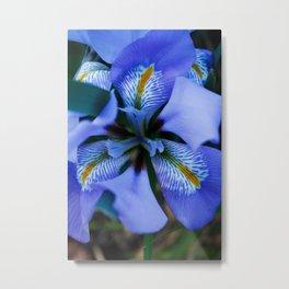 floral delites Metal Print
