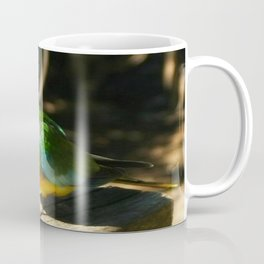 Scarlet-chested Parrot ( splendida ) Coffee Mug