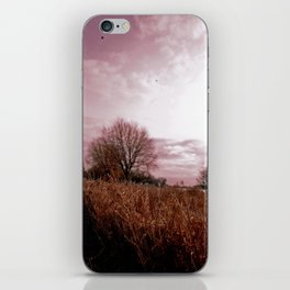 Where the Birds Weep iPhone Skin