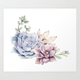 Pristine Succulents Blue and Pink Art Print
