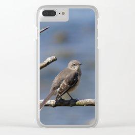 Northern Mockingbird Clear iPhone Case