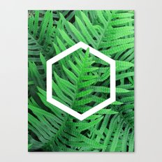 Exagon into the ferns Canvas Print