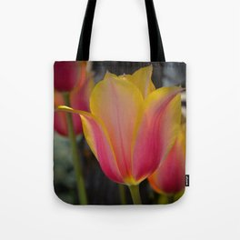 Yellow and Pink Tulip by Teresa Thompson Tote Bag