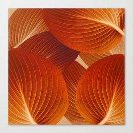 Leaves in Terracotta Color #decor #society6 #buyart Canvas Print