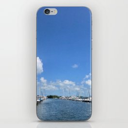 Coconut Grove iPhone Skin