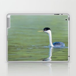A Grebe navigates the early morning waters on a peaceful lake Laptop & iPad Skin
