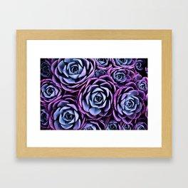 Succulent Garden Pink Purple Periwinkle Framed Art Print
