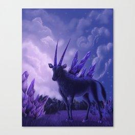 Old Dreamer Canvas Print