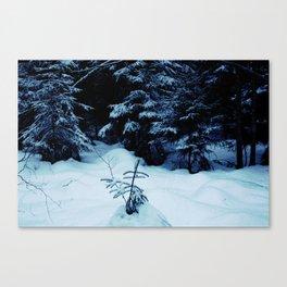 Mid-Winter Canvas Print