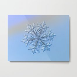 Real snowflake - Hyperion Metal Print