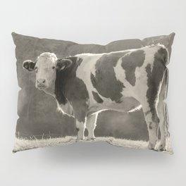 Cow in Field Pillow Sham