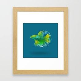 Japanese Fighting Fish. Framed Art Print