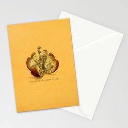 Steampunk Orange  (color option) Stationery Cards