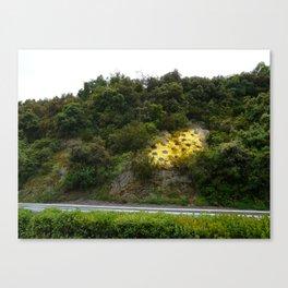 a fleur de peau Canvas Print