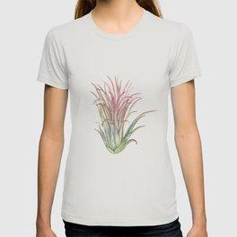 Airplant T-shirt