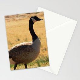 Golden goose Stationery Cards