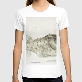 Antique Prickly anglerfish drawn by Fe Clarke (1849-1899) T-shirt