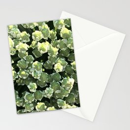 Corvallis Stationery Cards