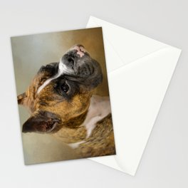 Golden Brindle Boxer Stationery Cards
