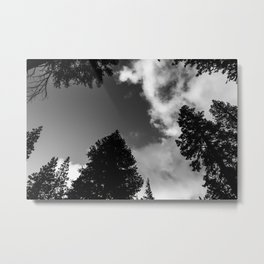 Feeling Small 2 Metal Print