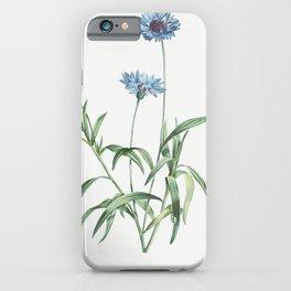 Blue flower from La Botanique de J J Rousseau by Pierre-Joseph Redoute (1759-1840) iPhone Case