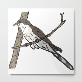 Yellow Billed Cuckoo Metal Print