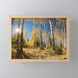 Crested Butte Colorado Fall Colors Panorama - 3 by OLena Art Framed Mini Art Print