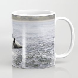 Jumping (breaching) Wild bottlenose dolphin tursiops truncatus. Coffee Mug