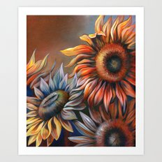 3 Sunflowers Art Print