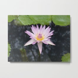 Pricess Flower Metal Print