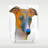 greyhound Shower Curtains featuring Greyhound by Marlene Watson