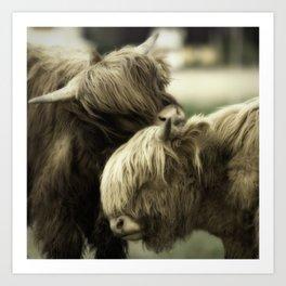 Highland Cattle I Art Print