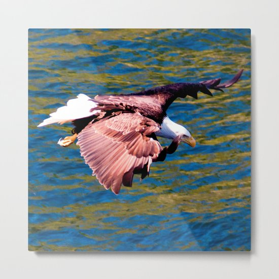 Eagle: Low Level Mission Metal Print