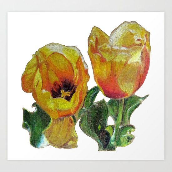 Bright Yellow Tulips Flower Drawing Art Print