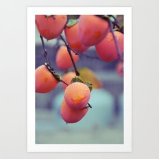 Persimmons in the Rain Art Print
