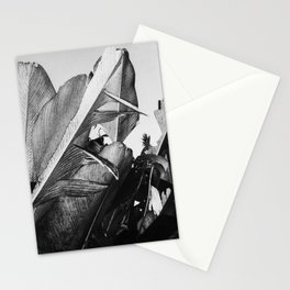 Palm Poetry Stationery Cards