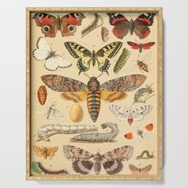 Popular History of Animals Butterfly Vintage Scientific Illustration Educational Diagrams Serving Tray