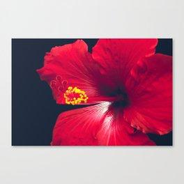 Ula Aloalo Hanohano Red Tropical Hibiscus Maui Hawaii Canvas Print