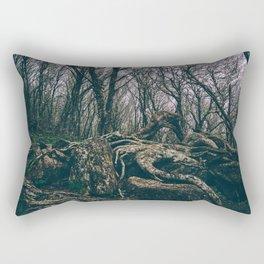 Craggy Knob Rectangular Pillow