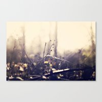 watercolour Canvas Prints featuring Watercolour  by Rae Louise