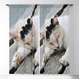 Cat Dreaming Blackout Curtain